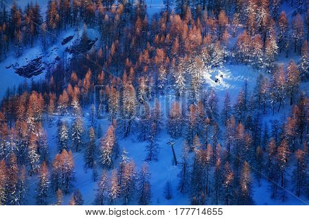 Aerial view of beautiful mountain forest with trees covered by ice during winter sunset
