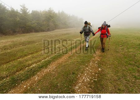 Hikers walk on a foggy forest trail in the hills of a plato