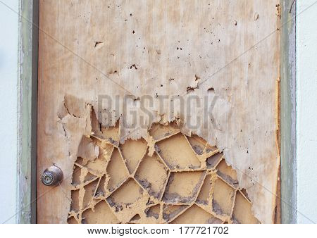 The wood door with termites damage for background