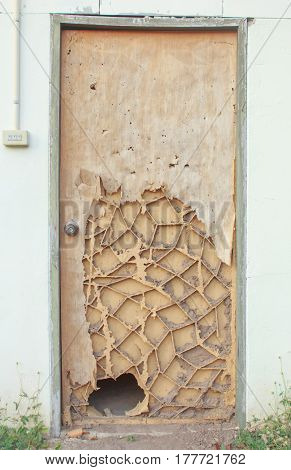 The wood door with termites damage,door broken