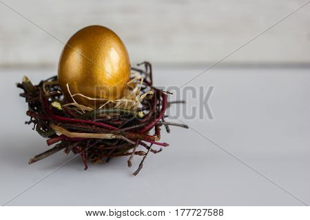 Golden easter egg in the nest on white rustic background.