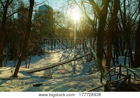 winter day in Moscow, the South-Western suburbs