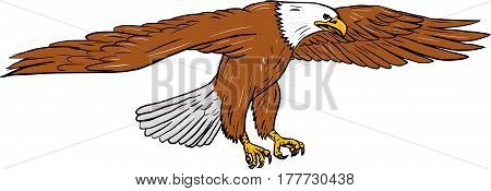 Drawing sketch style illustration of bald eagle swooping wings flapping viewed from the side set on isolated white background.
