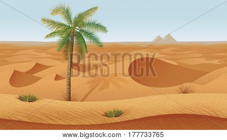 A high quality horizontal seamless background with desert, palms and dry grass. Pyramids on the horizon