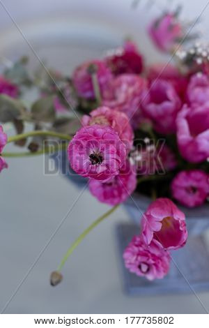 Pink Ranunculus And Pink Tulips Arranged In Iron Vase
