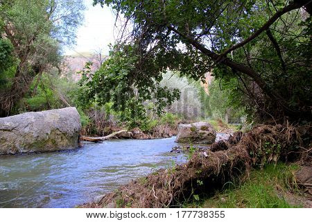 Travel To Cappadocia, Turkey. The View On The Mountain River With The Trees.