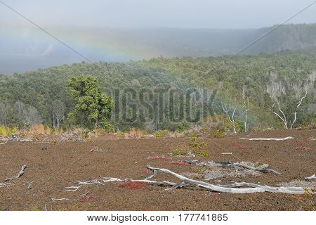Rainbow Over The Old Lava Field Trail In Volcanoes National Park, Big Island Of Hawaii