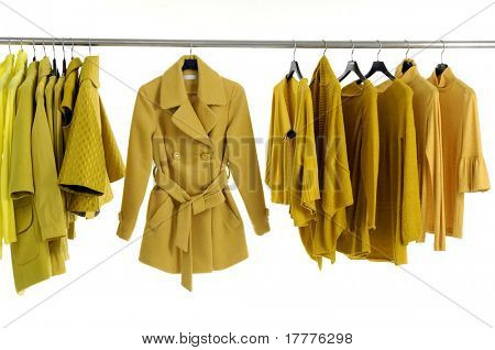 Yellow jacket on Hangers
