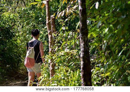 Woman Walking Along A Path Through Jungle