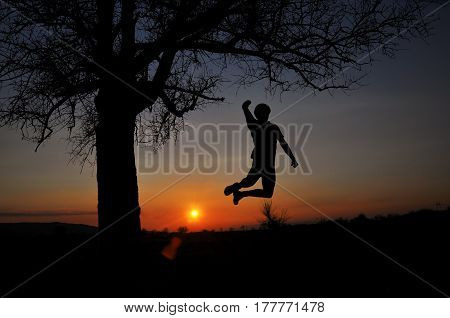 Silhouette of  man jumping in the air under a big tree. Happy man got a great idea and celebrate