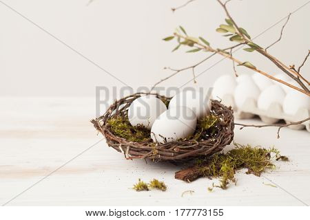 Eggs, Nest, Willow, Branches, Moss Green, Eggs In A Carton
