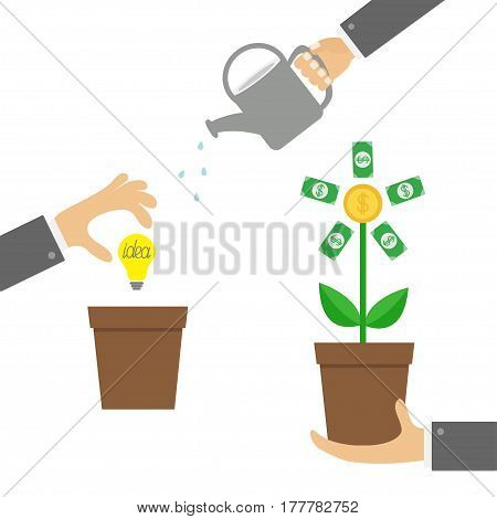 Three step infographic. Businessman hand holding money tree watering can idea bulb. Coin dollar sign Plant in the pot. Financial growth concept. Business icon Flat design White background Vector