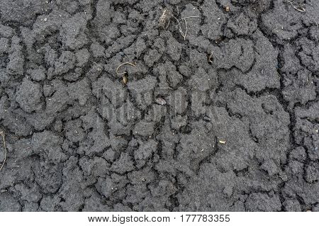 Close up of dry dark autumn ground with some cracks in it