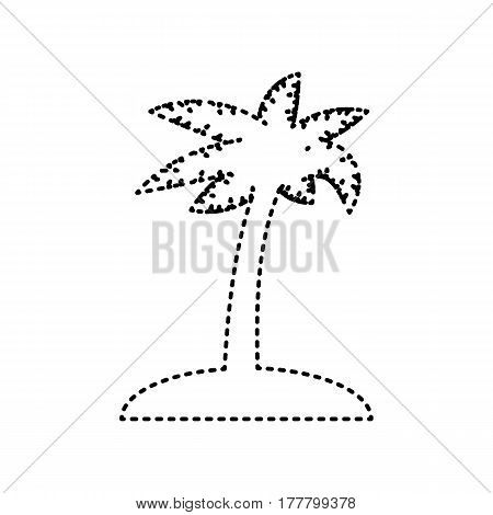 Coconut palm tree sign. Vector. Black dashed icon on white background. Isolated.