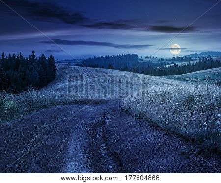 forest in mountain rural area. green agricultural field on a hillside. beautiful summer scenery at night in full moon light