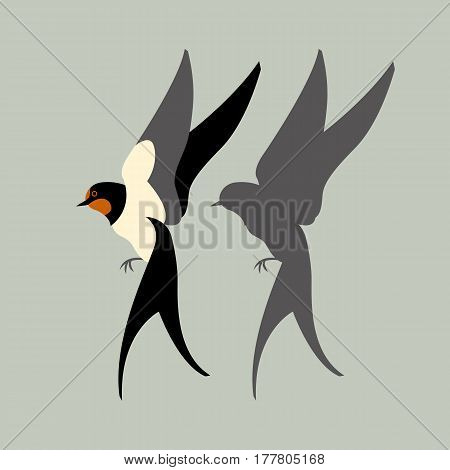 swallow vector illustration style Flat set silhouette