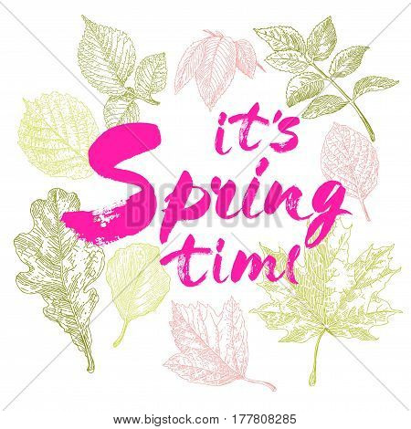 Its spring time vector lettering on a lilac background branches illustration. Hand drawn phrase. Handwritten modern brush calligraphy for invitation and greeting card t-shirt prints and posters. Elements for your design. White background.