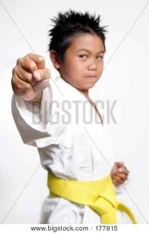 Karate Boys Fist