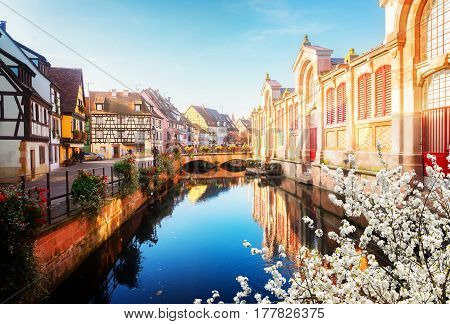 canal of Colmar, beautiful town of Alsace at spring, France