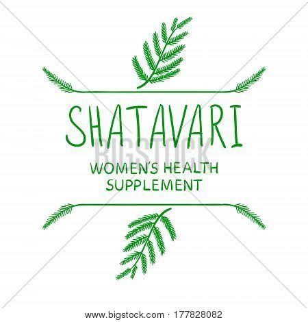 'Shatavari: women's health supplement' handwritten VECTOR letters with hand drawn borders, green on white.