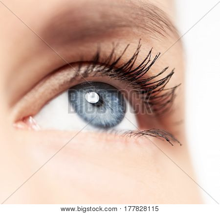 Closeup of human eye with blue pupil and long eyelashes over white background. Eyesight, disease and treatment concept.