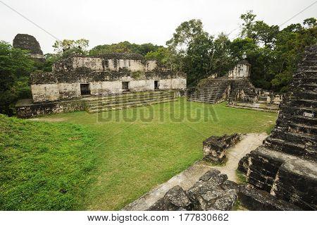 The Mayan Ruins Of Tikal