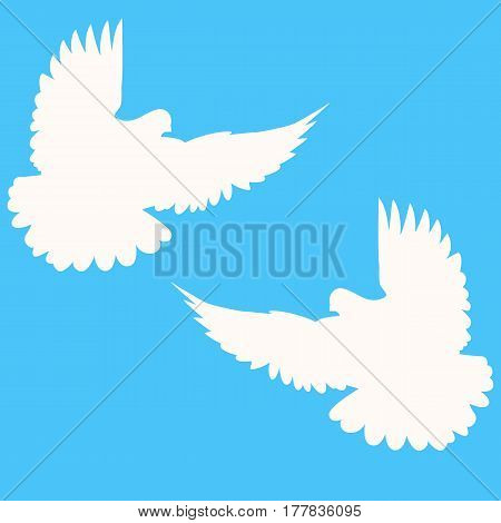 Pigeons. Wedding doves. A pair of doves. Vector illustration.
