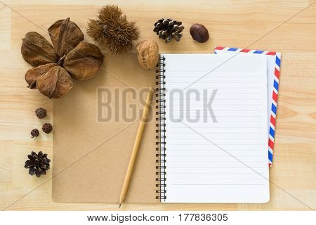 Top view of blank notebook with airmail envelope dried pine cone chestnut walnut cover on wooden background
