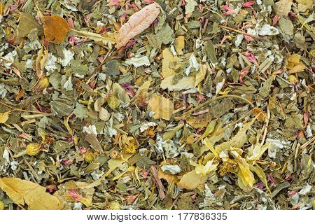 Closeup of dried fruity herbal tea with lemon balm, rose petal, marigold, cornflower, blackberry, lemongrass leaves with antioxidant benefit. Good for evening, after work