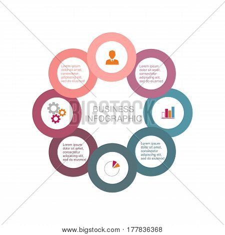 Pie chart of the eight business circles business template in flat design