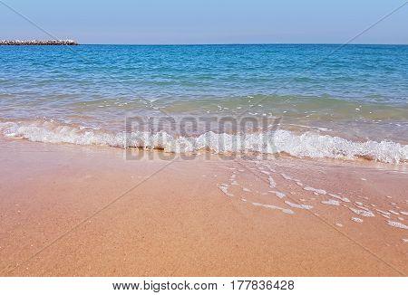 Pristine Sandy Seaside Beach On The Arabian Shore Of Kuwait