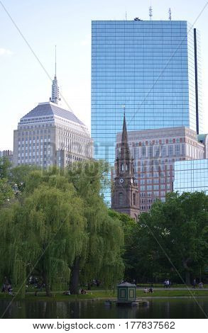 A look at Boston Garden with a weeping willow tree.
