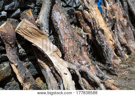 Row of Firewood Logs drying at Mountain Village in remote Area of Nepal Country