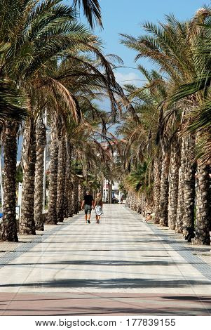 LAGOS, SPAIN - OCTOBER 27, 2008 - Couple walking along the palm tree lined promenade Lagos Malaga Province Andalusia Spain Western Europe, Octobedr 27, 2008.