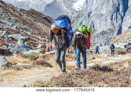 Young Porters of Mountain Expedition carrying heavy Bags using traditional Nepalese Head Straps on popular trek to Meru Peak. Sabai Valley, Solo Khumbu Area, Nepal. November 4, 2016