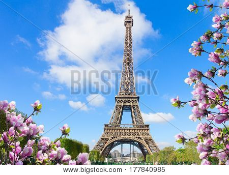 Eiffel Tower in sunny spring day in Paris, France