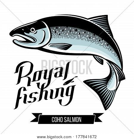 Silver Coho Salmon fish. Color outline vector illustration