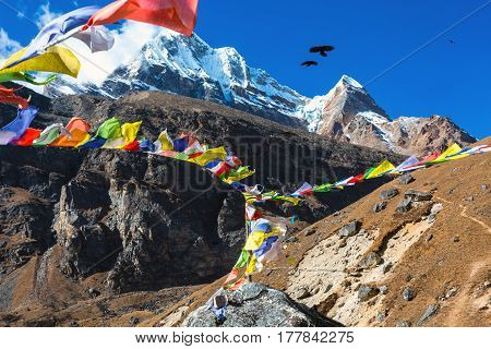 View of high Mountains and Nepalese buddhist prayer Flags on foreground Birds flying in blue Sky
