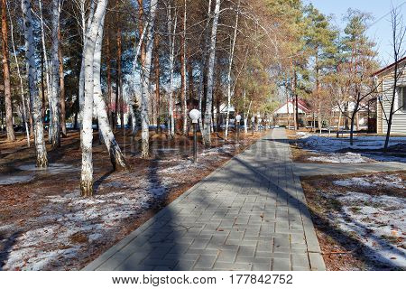 VOLGOGRAD RUSSIA - February 24 2017: The road in the winter park in the afternoon