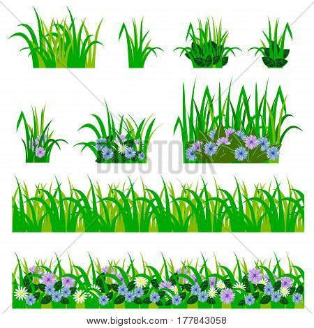 Set of garden flowers in grass. Fowers green leaves grass compositions can be used as elements for scenes and landscape backgrounds creating. Vector illustration isolated on white background