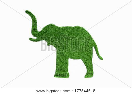 Isolated grass in elephant shape on white background