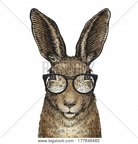 Cute Easter bunny with glasses. Cartoon vector illustration isolated on white background