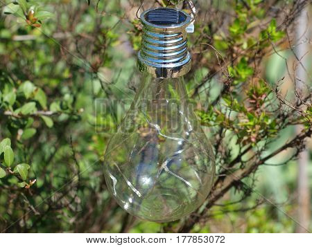 Solar Powered light bulb that provides light to a garden during nighttime.