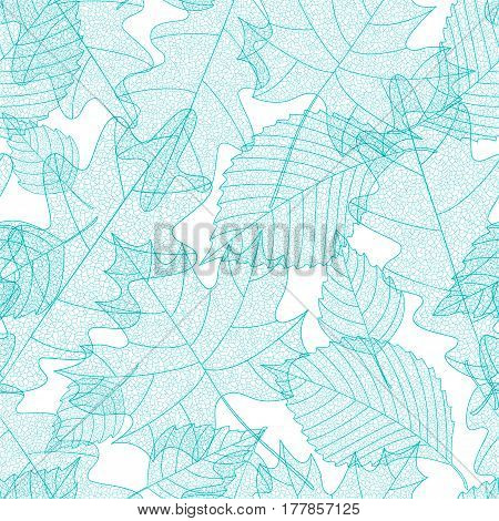 Seamless pattern with macro leaves skeletons. Elm, maple and oak leaves. Vector illustration. Environment and ecology concept background.