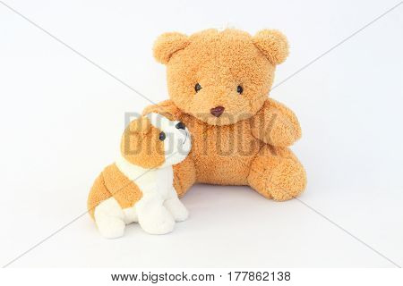 Teddy Bear and brown dog dolls brown ears on a white background.