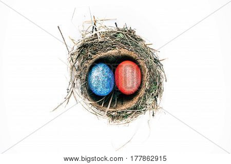 Two spotty-painted easter eggs in birds nest. Isolated over white background