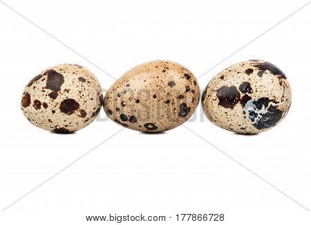 Three raw quail eggs in a row on a white background