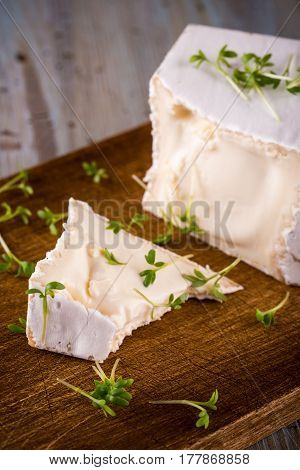 Unusual Camembert Cheese With Cube Shape And Spilled Green Cress