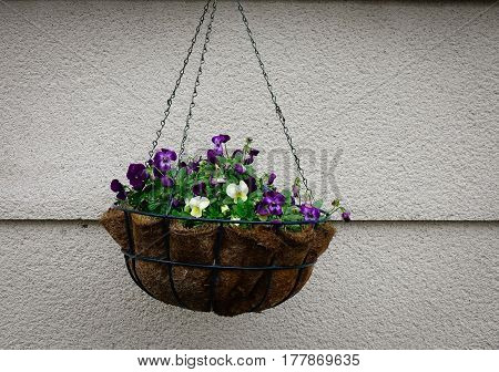 Hanging Flower For House Decoration