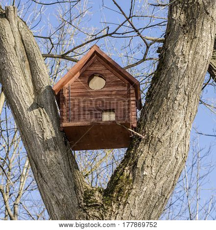 Brown wooden birdhouse nestled between the tree branches